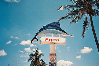 Miami SEO Expert: How to Position your Website on a Local Market - Featured Image