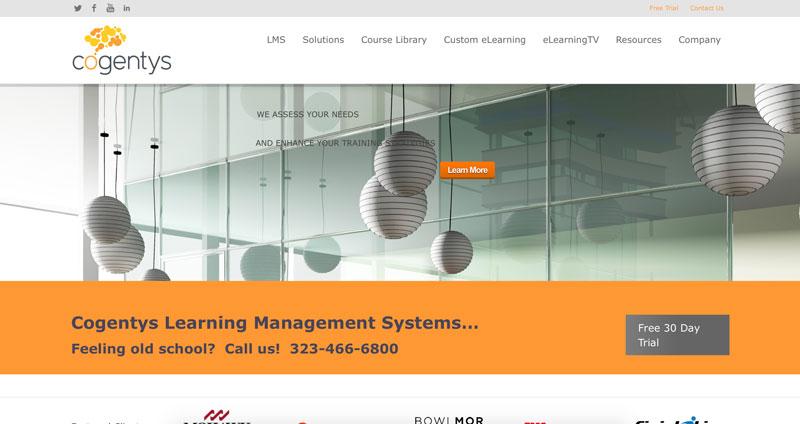 cogentys-website
